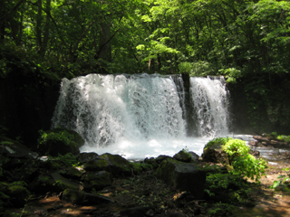 奥入瀬渓流の遡上を遮る銚子大滝